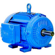 WEG High Efficiency Motor, 00209EP3E213T-W22, 2 HP, 900 RPM, 230/460 V,3 PH, 213T