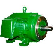 WEG Vector Duty Motor, 00218ET3FVD145TC, 2 HP, 1800 RPM, 230/460 Volts, TENV, 3 PH