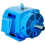 WEG NEMA Premium Efficiency Motor, 00512OT3E215TC, 5 HP, 1200 RPM, 208-230/460 V, ODP, 213/5TC, 3 PH