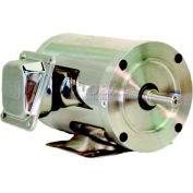WEG SHARK™ Wash Down Duty, 00536EP3ESS184TCFL, 5 HP, 3600 RPM, 230/460 Volts, TEFC, 3 PH