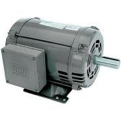 WEG General Purpose Single Phase Motor, 00536OS1C184T, 5HP, 3600RPM, 208-230V, 184T, ODP