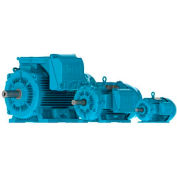 WEG IEC TRU-METRIC™ IE3 Motor, 01112ET3Y160L-W22, 15HP, 1200/1000RPM, 3PH, 460V, 160L, TEFC