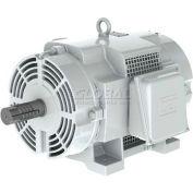 WEG Oil Well Pumping, 01512OS3EOW284T, 15 HP, 1200 RPM, 208-230/460 Volts, ODP, 3 PH