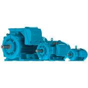 WEG IEC TRU-METRIC™ IE3 Motor, 01536ET3Y160M-W22, 20HP, 3600/3000RPM, 3PH, 460V, 160M, TEFC