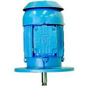 WEG P-Base Motor, 07518EP3E365HP, 75 HP, 1800 RPM, 230/460 Volts, TEFC, 3 PH