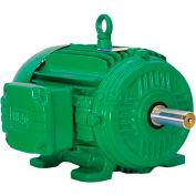 WEG Cooling Tower Motor, 10012ET3ECT444T, 100 HP, 1200 RPM, 208-230/460 Volts, 3 Phase, TEFC