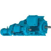 WEG Crusher Duty® Motor, 10018ET3ERB405T-W22, 100 HP, 1800 RPM, 208-230/460 Volts, TEFC, 3 PH