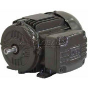 WEG IEC TRU-METRIC™ IE2 Motor, .5518EP3EAL80, 0.75HP, 1800/1500RPM, 3PH, 230/460V, 80, TEFC