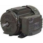 WEG IEC TRU-METRIC™ IE2 Motor, .7509EP3EAL100L, 1HP, 900/750RPM, 3PH, 230/460V, 100L, TEFC