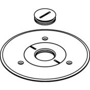 """Wiremold 896ck-1 Floor Box Cover Plate, Brass, For Carpet W/1"""" Opening - Pkg Qty 8"""