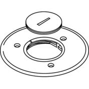 """Wiremold 896ck Floor Box Cover Plate, Brass, For Carpet W/2 1/4"""" Opening - Pkg Qty 8"""
