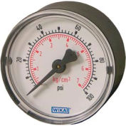 "2"" Type 111.12 60PSI Gauge - 1/4"" NPT CBM Steel"