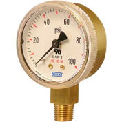 "2"" Type 111.11 3,000PSI Gauge - 1/4"" NPT LM Polished Brass"