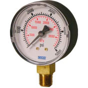 "2.5"" Type 111.10 60PSI/KPA Gauge - 1/4"" NPT LM Polished Brass"