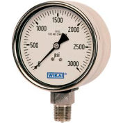 "4"" Type 233.30 100PSI Gauge - 1/2"" NPT LM Stainless Steel"
