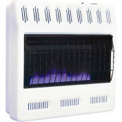Williams Blue-Flame Vent-Free Heater 3096513.9 Duel Fuel 30000 BTU