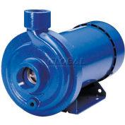 Goulds 1MC1C4E0 MCC Centrifugal Pump - Single Phase TEFC Motor - 230V - 1/2 HP - 220 GPM