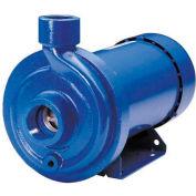 Goulds 1MC1C5E0 MCC Centrifugal Pump - Three Phase TEFC Motor - 230 / 460V - 1/2 HP - 220 GPM