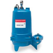 """Goulds WS1012BHF 2"""" Submersible Sewage Pump - 1 HP- 3500 RPM- 230V- 13 Amps"""