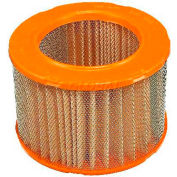 FRAM® CA6370 Extra Guard Round Plastisol Air Filter - Pkg Qty 2