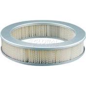 Hastings® AF289 Air Filter - Pkg Qty 2