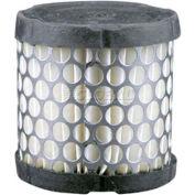 Hastings® AF997 Air Filter - Pkg Qty 2