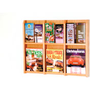 6 Magazine/12 Brochure Oak & Acrylic Wall Display - Light Oak
