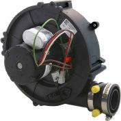 Continental® Exhauster W010-2558, 2 Speed (Gentek)