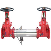 """Watts 0111587 6"""" 957 Reduced Pressure Zone Assembly"""