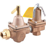 "Watts 1/2"" 1450F Relief Valve"