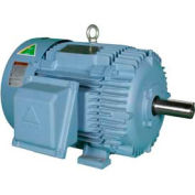 Hyundai PEM Motor HHI125-18-444TBB, TEFC, Rigid, 3 PH, 444T, 208-230/460V, 125 HP, 1800 RPM, BB