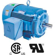 Hyundai PEM Motor HHI125-18-444TSBB, TEFC, Rigid, 3 PH, Short Shaft, 444T, 125 HP, 1800 RPM, 142 FLA
