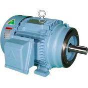 Hyundai PEM Motor HHI20-18-256TC, TEFC, Rigid-C, 3 PH, 256TC, 20 HP, 1800 RPM, 24.8 FLA