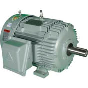 Hyundai T-Frame Motor IEEE20-18-256T, TEFC, Rigid, 3 PH, 256T, 460V, 24.8 FLA