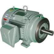 Hyundai T-Frame Motor IEEE3-18-182TC, TEFC, Rigid-C, 3 PH, 182TC, 3 HP, 460V, 3.9 FLA