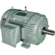 Hyundai T-Frame Motor IEEE60-12-404T, TEFC, Rigid, 3 PH, 404T, 460V, 71.2 FLA, RB