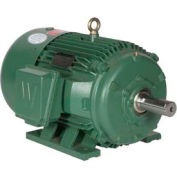 Worldwide Electric Motor PEWWE1-18-143T, PREM EFF, TEFC, Rigid, 3 PH, 143T, 208-230/460V, 1.6 FLA