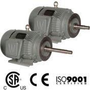 Worldwide Electric CC Pump Motor WWE1-18-143JP, TEFC, Rigid-C, 3 PH, 143JP, 1 HP, 1800 RPM