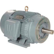 Worldwide Electric T-Frame Motor PEWWE200-18-445/7TC-F2, GP, TEFC, Rigid, 3 PH, F2, 445/7TC, 230 FLA