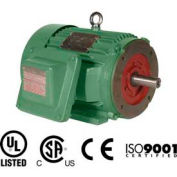 Worldwide Electric EXP Motor XPEWWE15-18-254TC, TEXP, Rigid-C, 3 PH, 254TC, 15 HP, 16.9 FLA