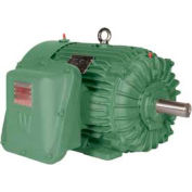 Worldwide Electric EXP Motor XPEWWE30-18-286T, TEXP, Rigid, 3 PH, 286T, 30 HP, 1800 RPM, 33 FLA