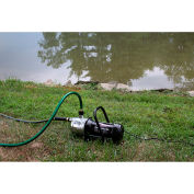 Wayne PLS100 Portable Stainless Steel Water Sprinkling Pump 1 Horsepower