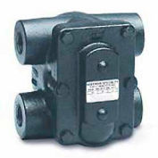 F&T Steam Trap FT015H 1 In. H Pattern