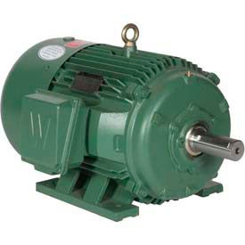 Worldwide Electric Premium Efficiency Motors, Three Phase, TEFC, 208-230/460V