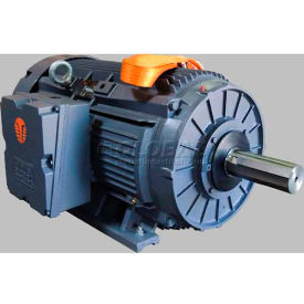 TechTop 3-Phase NEMA Cast Iron Crusher Duty TEFC Motors