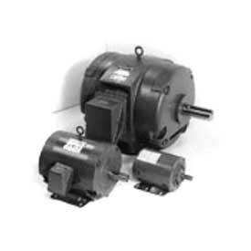 Marathon Motors Metric Motors, 3 Phase, DP, Rigid Mount