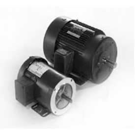Marathon Motors Metric Motors, 3 Phase, TENV, Rigid C Face Mount