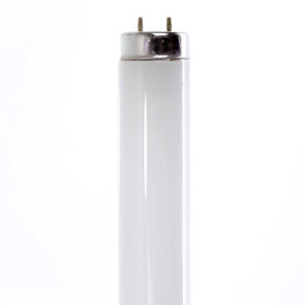 T10 Fluorescent Bulbs