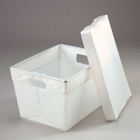 Corrugated Plastic Postal Mail Tote With Lid 18-1/2x13-1/4x12 Natural - Pkg Qty 10