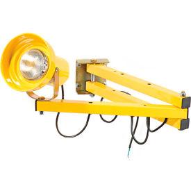 """Double Arm Dock Light with 40""""L Reach, Par38 or BR40 bulb compatible"""